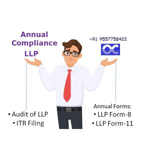 LLP ANNUAL COMPLIANCE PACKAGE